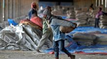 Asia Rice: India prices dip amid rupee decline, Thai rates soar on supply crunch