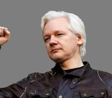 Prosecutors Mistakenly Reveal Criminal Charges Against Julian Assange