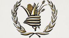 Le prix Nobel de la paix 2020 revient au Programme alimentaire mondial de l'ONU