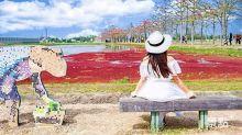 木棉花道遇見滿江紅 季節限定上帝調色盤