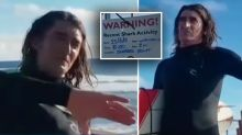 'I was terrified': Experienced surfer knocked off board by shark