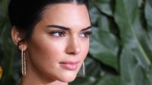 Kendall Jenner criticised for using animal as accessory in Instagram picture