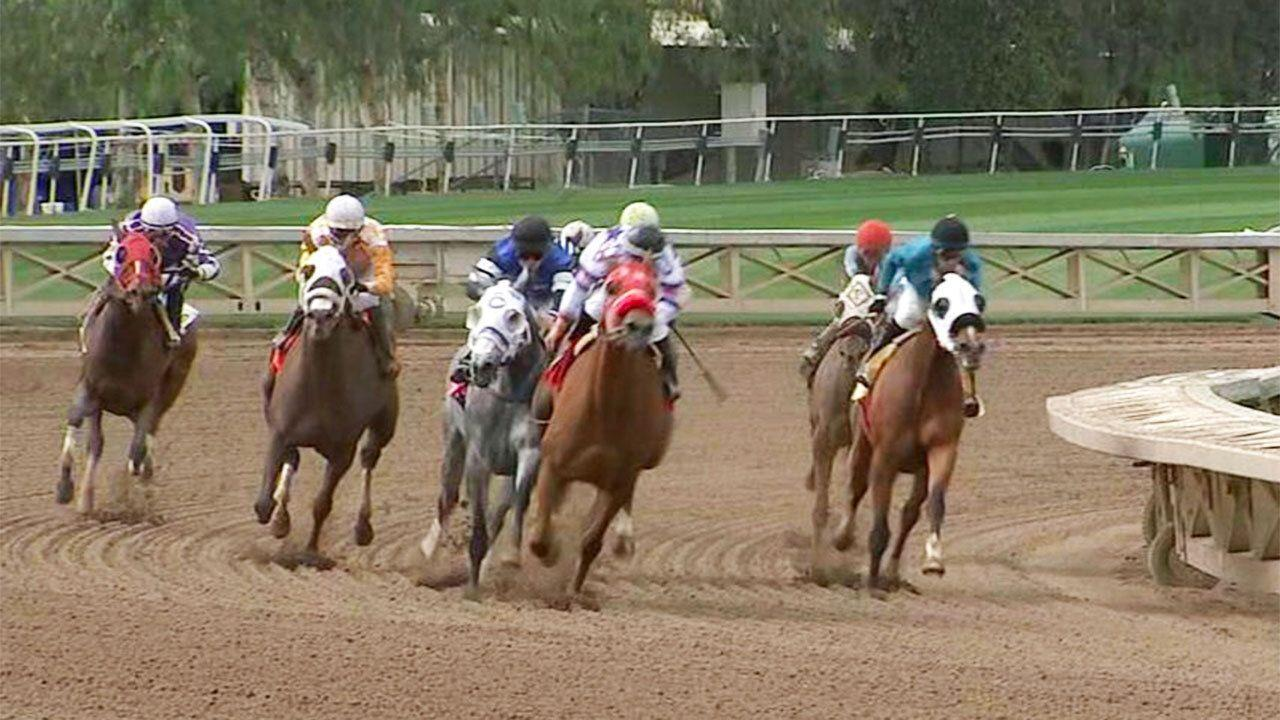 Another horse dies at controversial race track