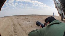 World Photography Day: Kolkata-based Artist Explains What it Takes to be a Wildlife Photographer