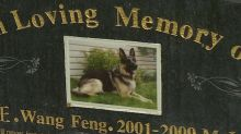 From open-casket funerals to headstones: Pet cemeteries help animal lovers deal with loss