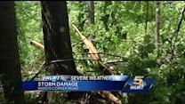 Team coverage: Storms roll through area, leaving behind damage