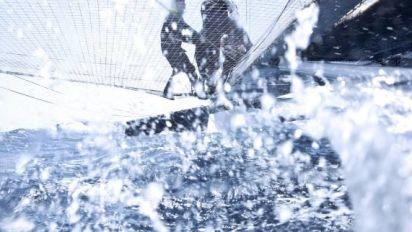 Tous sports - Paris 2024 - La course au large n'a pas été retenue pour Paris 2024 par le CIO
