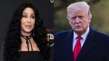 Cher calls Trump an 'ignorant thug with a lizard brain' after he applauds her immigration stance
