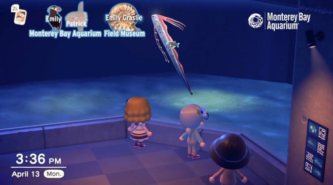 Monterey Bay Aquarium Animal Crossing Streams