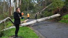 Melbourne storm: Three killed as winds cause widespread damage