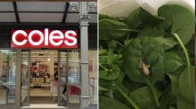 Woman 'very disappointed' by find in Coles spinach bag