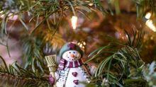 Comment faire pour que votre sapin de Noël garde ses épines
