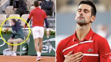 'Deja vu': Novak Djokovic hits line judge in face at French Open