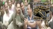 Terrifying moment python almost strangles man as he poses with huge snake
