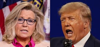Liz Cheney's rejection of Trump stuns Fox News host