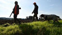 Rhône: un chasseur trébuche et se blesse au pied avec son arme