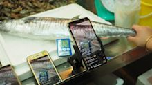 An online seafood auction straight out of Geylang Serai wet market