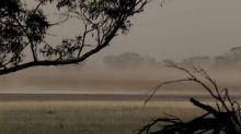 Dust Storm Hits Western Australian Wheatbelt Region as Ex-Cyclone Brings Wild Winds Across the State