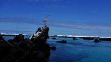 """Ecuador dice que vigila """"numerosa"""" flota pesquera china en inmediaciones de Islas Galápagos"""