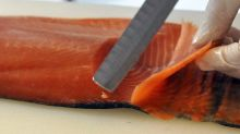 Ministero della Salute richiama lotto di pesce dai supermercati