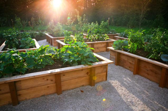 Gravel Landscaping These 10 Gardens Will Change Your Mind