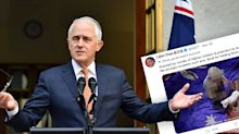 'Never seen anything like it': Turnbull's advice for dealing with 'bully' China