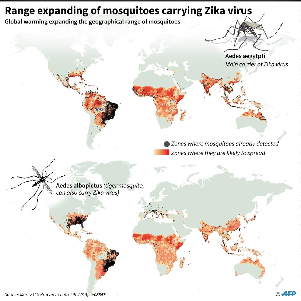 Range expanding of mosquitoes carrying the Zika virus (AFP Photo/)