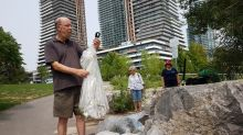 118 kg of garbage in 3 hours: How residents are cleaning up the Humber Bay Park pond
