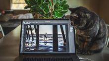 Estos son los mejores programas gratuitos para editar fotos