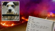 Hero firefighters' heartfelt note after protecting shelter animals from bushfire