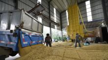 China has ample soybean supplies, big price moves unlikely: agriculture ministry