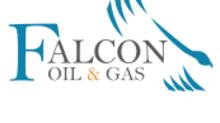 Falcon Oil & Gas Ltd. - 2021 Work Programme Update – Beetaloo Sub-Basin