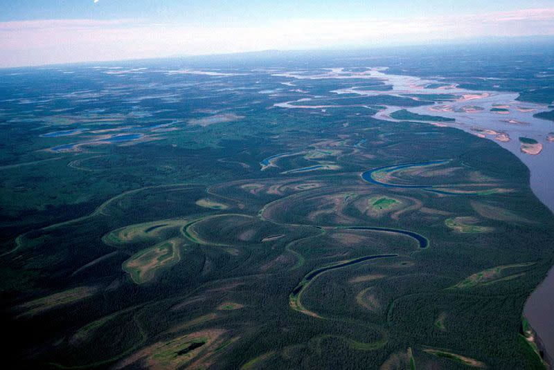 Mercury released by permafrost thaw puts Yukon River fish at risk - study