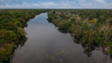 Amazon suffering 'epidemic' of illegal gold mines