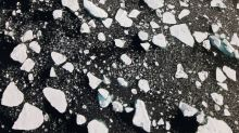Arctic sea ice suffers 'devastating' loss, shrinks to second lowest on record