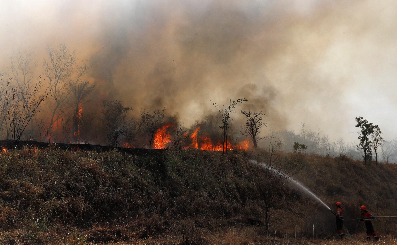 Conservation group: Bolivia fires ravaged big cat habitat