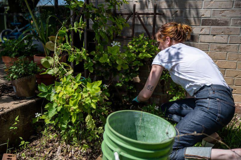 Home Gardening Blooms Around The World During Coronavirus Lockdowns