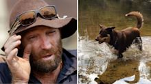 Widowed firie whose home was destroyed by bushfires searches for his beloved dog