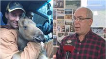 Do not remove moose from wild, government and hunting group warn