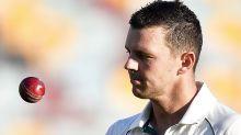 'Hard to stop': Josh Hazlewood's doubts over cricket virus solution