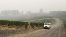 Wildfires taint West Coast vineyards with taste of smoke