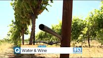 UC Davis Researchers Work To Slash Water Usage By California Vineyards