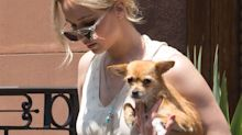Jennifer Lawrence's dog is all of us while out on a walk with her mom