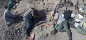 Scientists unearth dinosaur fossils in Argentina. (Reuters)