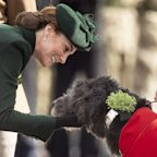 Duchess of Cambridge reunited with Irish Wolfhound, Domhnall, at St Patrick's Day parade