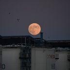 Oil down as U.S. virus spike stokes demand worries