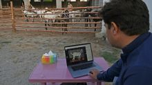 Virus fears force animal sellers online for Muslim festival
