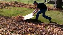 Cardboard Beats Rake for Efficiently Clearing Leaves