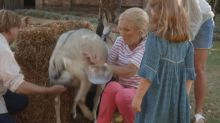 Mary Berry attacked by a goat as she tries to milk it on her BBC TV show