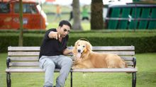 Bollywood's love for animals